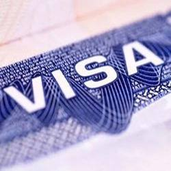 Do you want to get a work visa for New Zealand?
