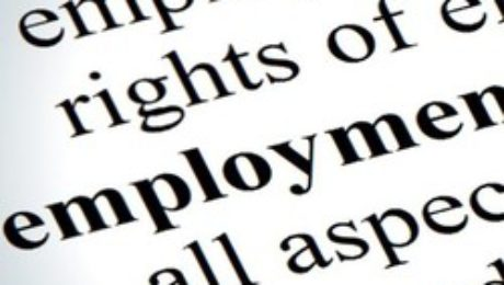 Employment Rights In New Zealand