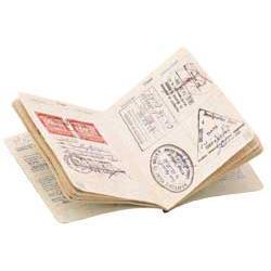 New Zealand Emigration Options