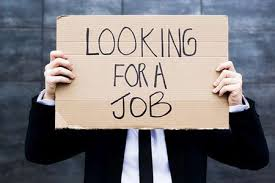 searching for a job in New Zealand
